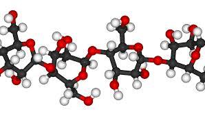 liên kết của cellulose