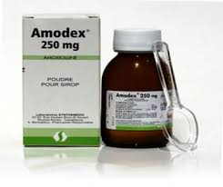 bột pha siro amodex