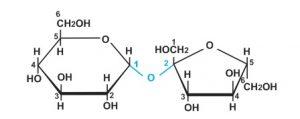 phản ứng trao đổi phân tử