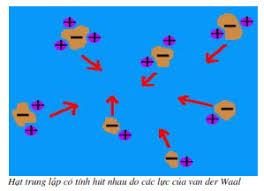 Lực hút Van der Waals