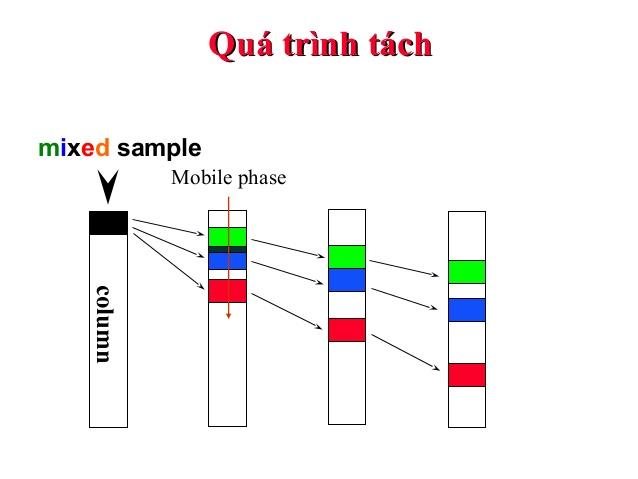 đánh giá dược liệu bằng phương pháp sắc ký cột
