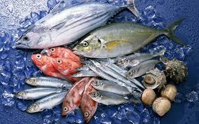 Thực phẩm cá